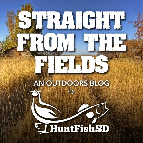 Straight From The Fields Blog